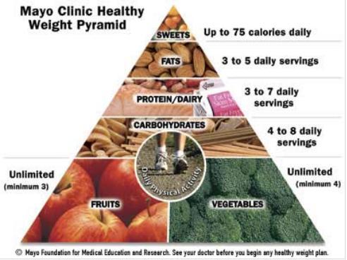 piramida makanan diet mayo